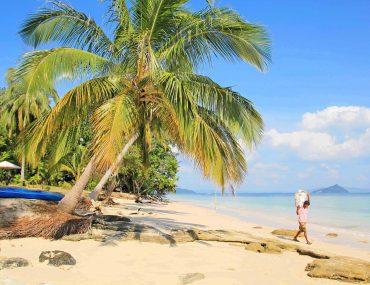 Koh Bulon, island, Thailand Island hopping, backpacking, travel, palm