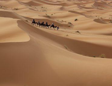 Kameltrekking, Wüstentour, Sahara, Marokko