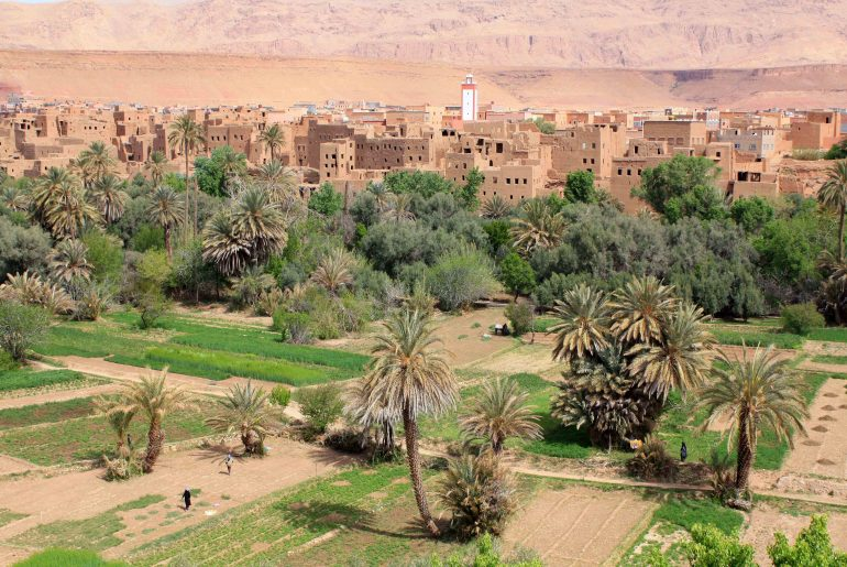Oasis, Morocco, self drive, road trip, view, viewpoint